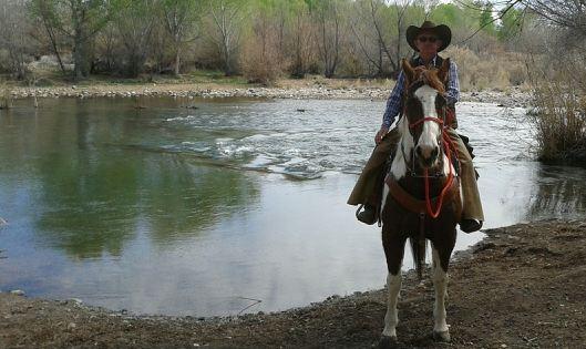 arizona, buckeye, cow, horse, donkey, pony, dead, glendale, llama, peoria, phoenix, removal, rendering, scottsdale, surprise, new river, cave creek, carefree, scottsdale, livestock